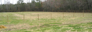 back field fencing