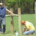 Building Fences, Part II