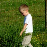 Finding Summer Daycare