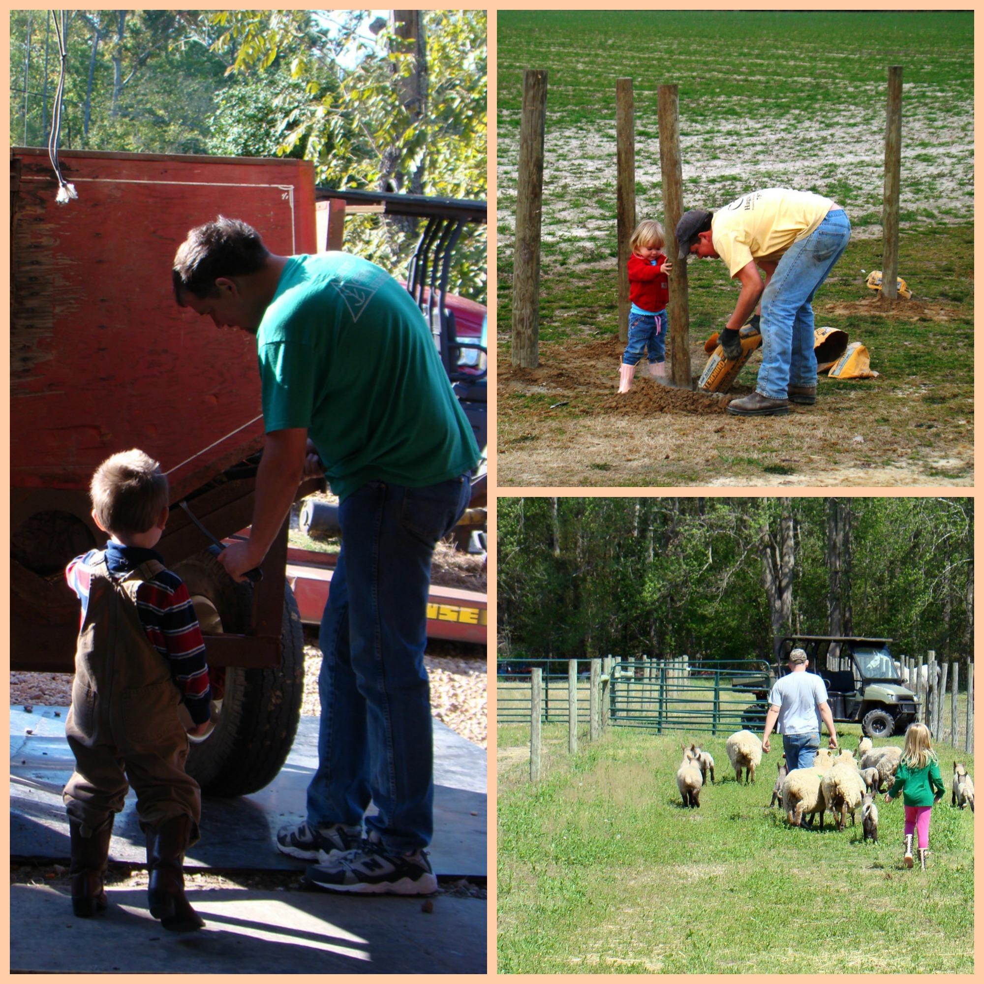 family farming 1