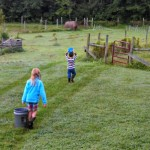 Chores After Dark…and Other Daily Adventures