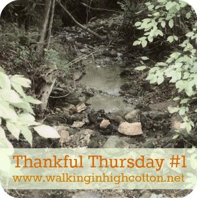 thankful thursday #1 @wihc