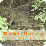 How Do You Know It's Fall?…Thankful Thursday #3