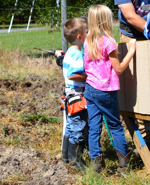 Here they are working on the duck house--or watching Daddy work on the duck house--or listening to Daddy explain how to work on the duck house. I don't know.