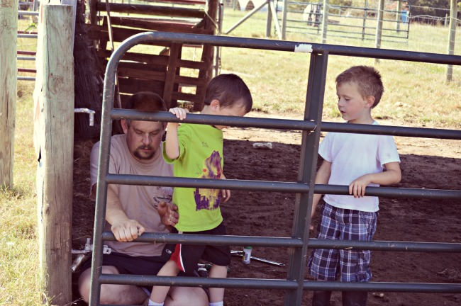 The boys were helping Mr. Fix-It hang and straighten up some gates on Saturday after soccer.