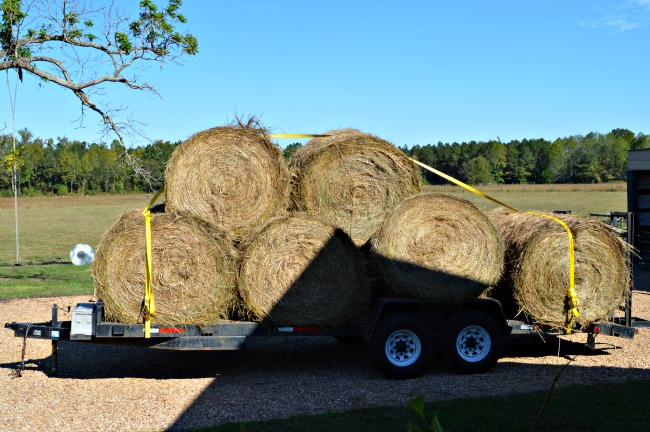 And the bales start rolling in...