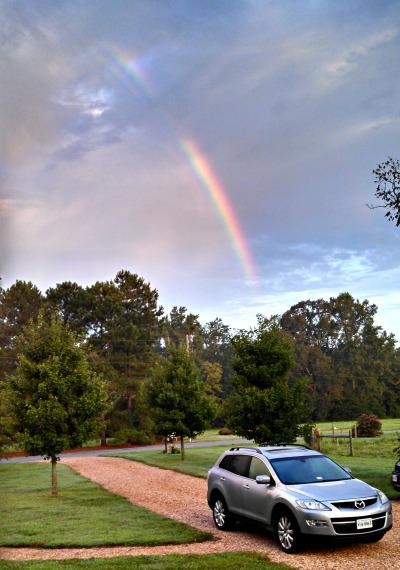 2013 a rainbow