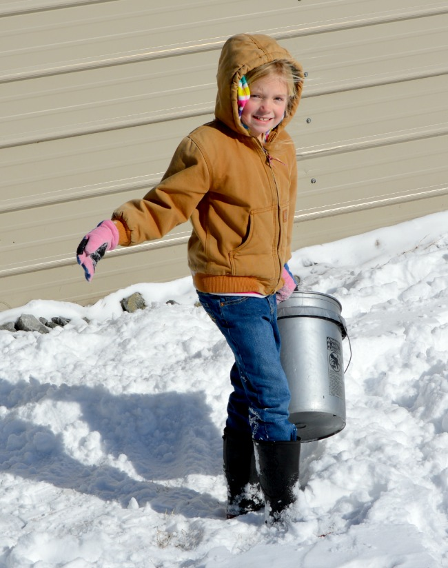Our buckets were doing double time as chores and snow plows.