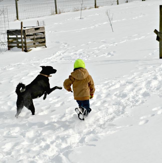 snow chores 7