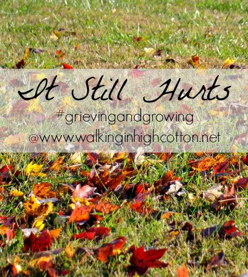 It Still Hurts...Grieving and Growing @ Walking in High Cotton