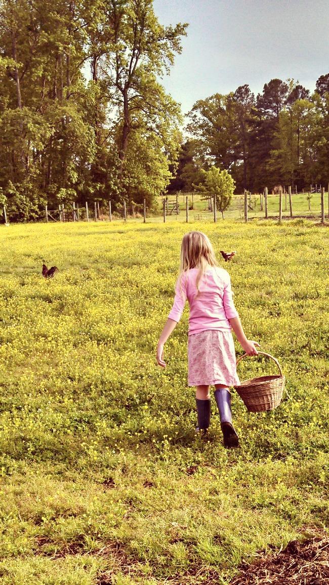 farmgirl 1
