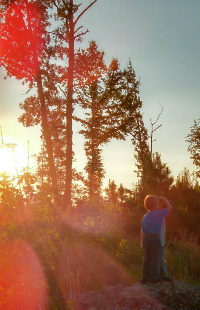 camping horizons 1