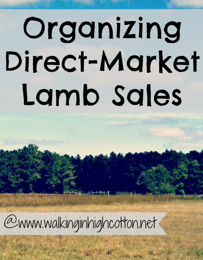Here's a break down of the simple system we use to track our direct-market Fall lamb sales. (via Walking in High Cotton)