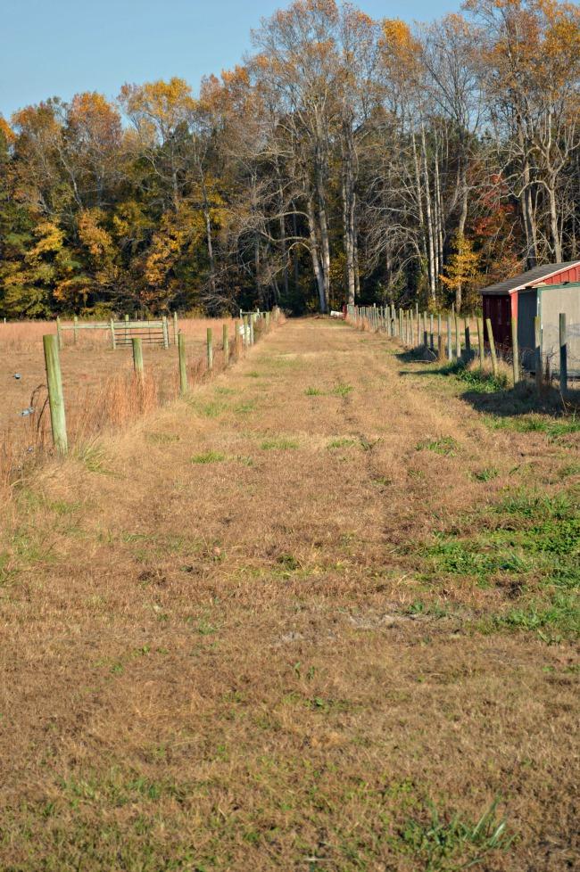 small farm -- land 1