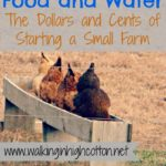 Figuring Out Food and Water…the Dollars and Cents of Starting a Small Farm