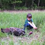 Farm Dogs, Turkeys, and Snakes…the Daily Farm Adventures {80}