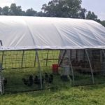 Chicken Hoop House Maintenance…the Daily Farm Adventures {88}