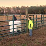 Those Boys…the Daily Farm Adventures {95}