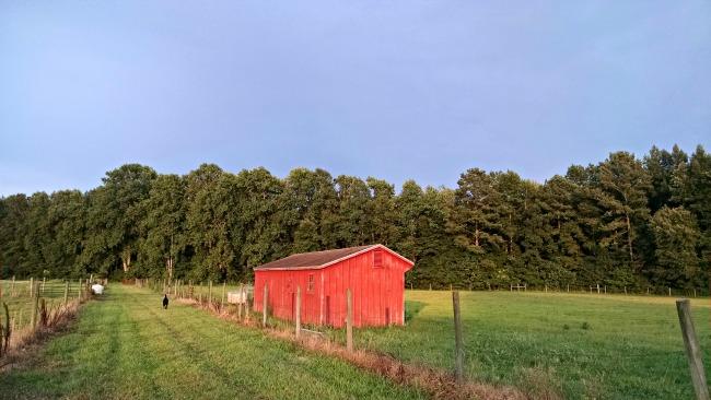 summer storm barn