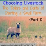 Choosing Livestock (Part 1)…the Dollars and Cents of Starting a Small Farm