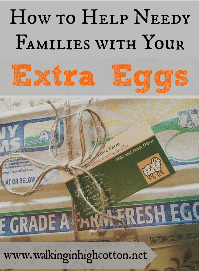 How to Help Needy Families in your community with extra spring eggs from your chickens, via Walking in High Cotton.