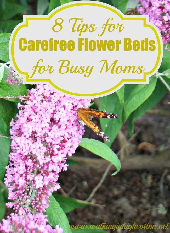 8 tips for carefree flower beds for busy moms--add color without the work. via Walking in High Cotton