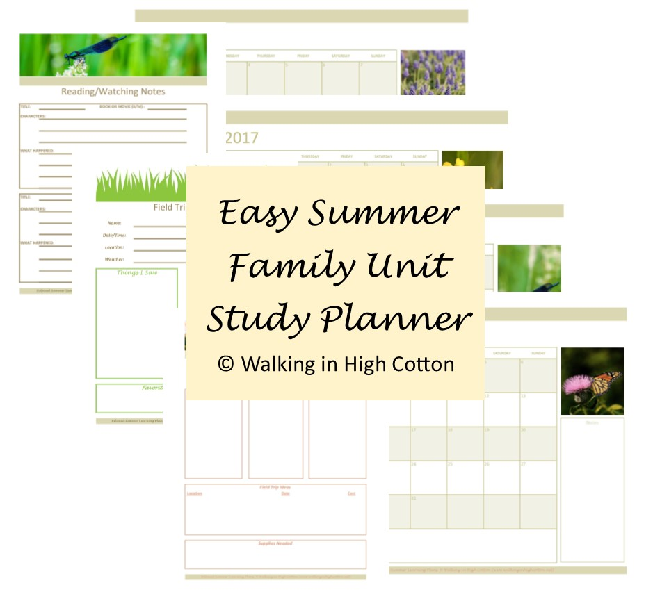 easy summer unit study planner