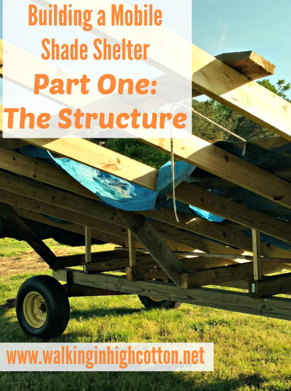 Building A Mobile Shade Shelter (Part One) The Structure...for pasture based, rotational grazing livestock via Walking in High Cotton
