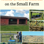 Pros and Cons of Mobile Livestock Shelters on the Small Farm