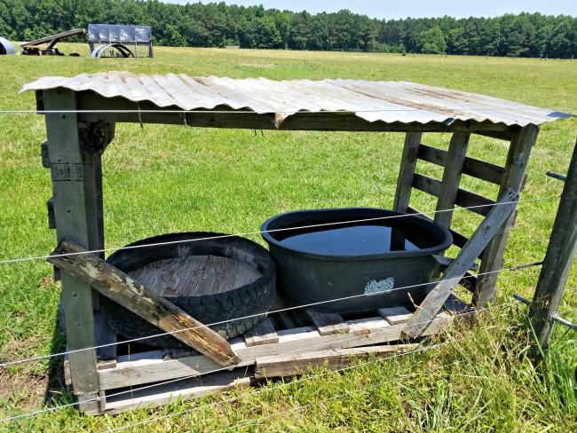 The Pros and Cons of using Mobile Livestock Shelters on the Small Farm ... via Walking in High Cotton
