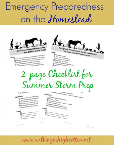 2 page FREE PRINTABLE emergency preparedness checklist for the homestead via Walking in High Cotton