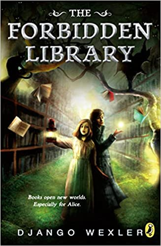 Book series about Library Adventures for Middle Grade Readers