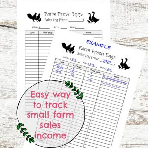 Farm Fresh Eggs Sales Log PRINTABLE via Walking in High Cotton